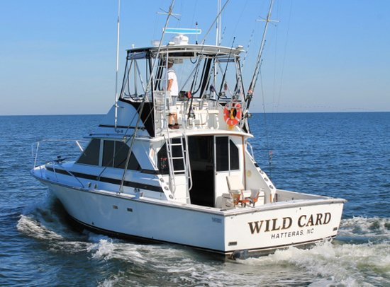 Wild Card Charters