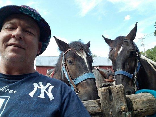 K k equestrian center east durham ny omd men for New durham media center