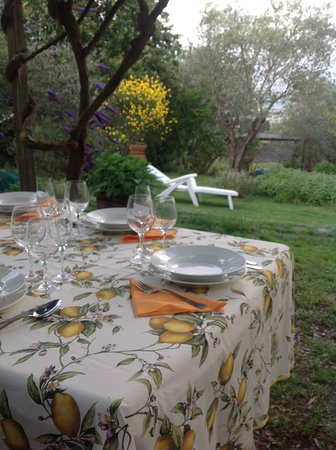 Scandicci, Italy: A beautiful garden in the hills where we have our meals