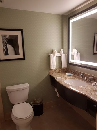 Hilton Garden Inn Washington DC/US Capitol Resmi