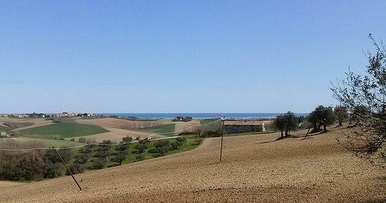 Monte San Vito, Ιταλία: panorama dalla struttura sul mare
