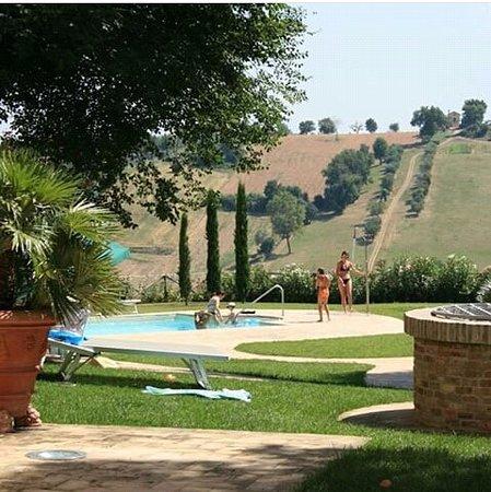 Monte San Vito, Ιταλία: piscina