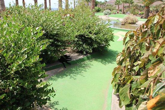 Tuineje, İspanya: Mini Golf