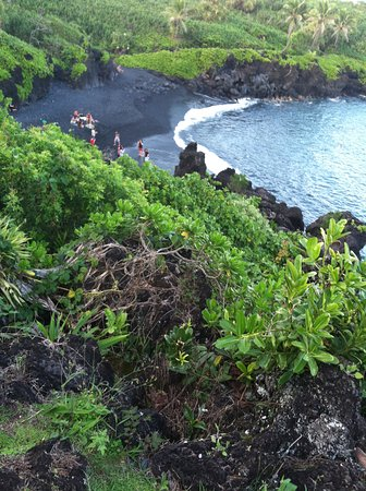 Maui Tours and Transportation