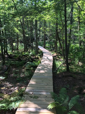 Bridgton, ME: Pondecherry Park