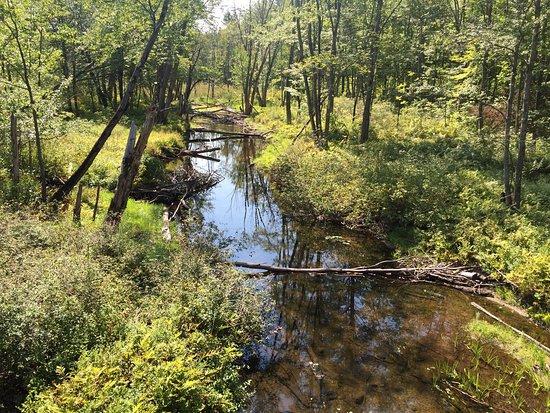 Bridgton, Maine: Pondecherry Park