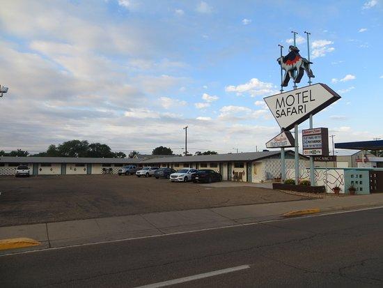 Фотография Motel Safari
