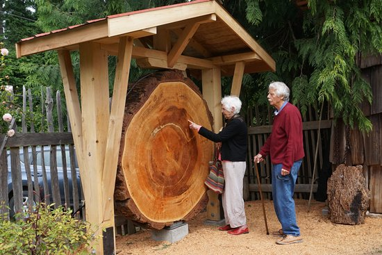 Mansons Landing, Kanada: Big Tree Exhibit