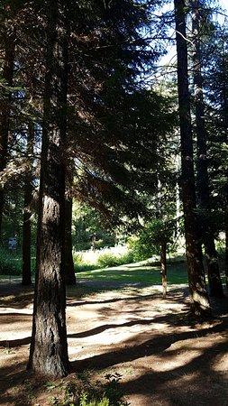 Giardino Botanico Alpino di Pietra Corva : interno
