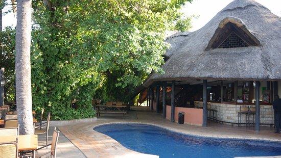 Victoria Falls Waterfront: Pool next to bar.