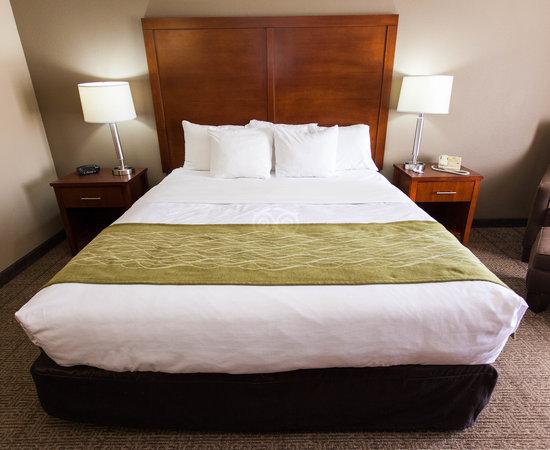comfort inn suites sacramento university area c 1 3 8 c 125 rh tripadvisor ca