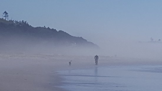 Cloverdale, OR: Mist or no mist, any day at the beach is great!