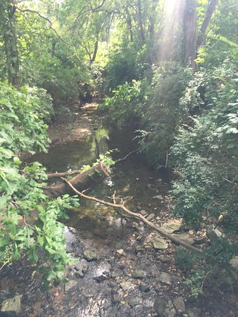 Sugar Creek Park: Surrounded by woods