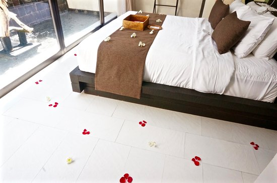 eqUILIBRIA SEMINYAK: Cute Honeymoon touch they added with the petals.
