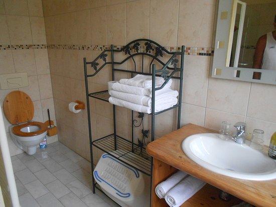 Saint-Nicolas-les-Citeaux, Francia: la salle de bain rustique et moderne avec une grandedouche.