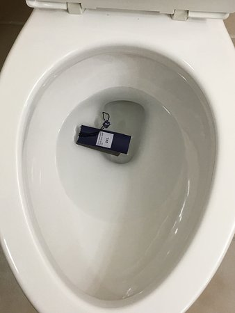 Hilton North Raleigh/Midtown: Found a clothing tag in the toilet in my bathroom when I arrived. Made me wonder if toilet had b