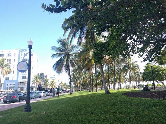 Beach Paradise Hotel: Parque frente al hotel.