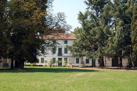 Villa Letizia, Wassermann di Giavera del Montello