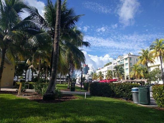 Beach Paradise Hotel: Parque frente al hotel antes de entrar a la playa.