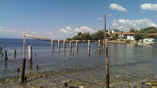 Lefokastro, Yunani: Stefanos Fish Taverna