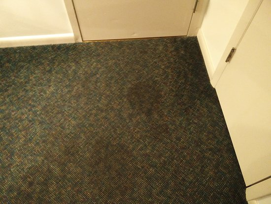Callicoon, estado de Nueva York: Outdated stained carpet
