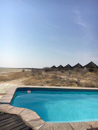 Onkoshi Camp: Honeymoon chalet and pool