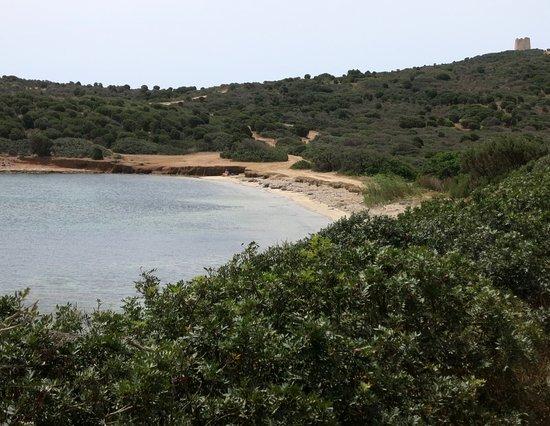 Malfatano beach: verso la torre di capo malfatano