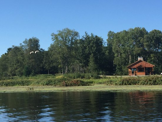 Evart, MI: View from the canoe on the pond