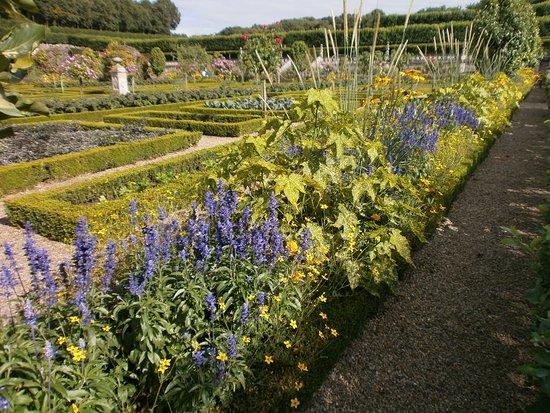 Jardin Potager Magnifiques Legumes Photo De Chateau De Villandry