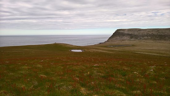 Latrabjarg, Islandia: The meadows on the opposite side of the cliff.