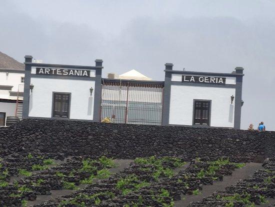 La Geria, إسبانيا: Bodega visitée