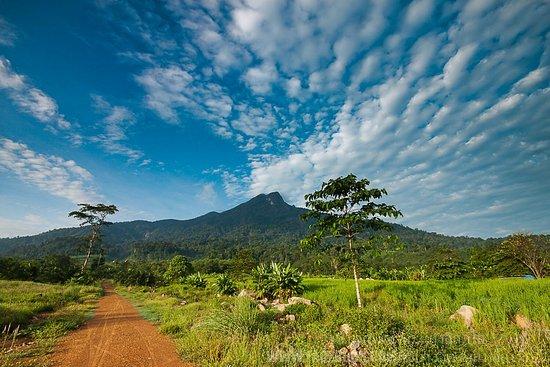 Khao Phanom, Thailand: เป็นอีกอำเภอหนึ่งในจังหวัดกระบี่ มีสถานที่ท่องเที่ยวน่าสนใจคือน้ำตกต้นหารและการเดินทางพิชิตยอดเข