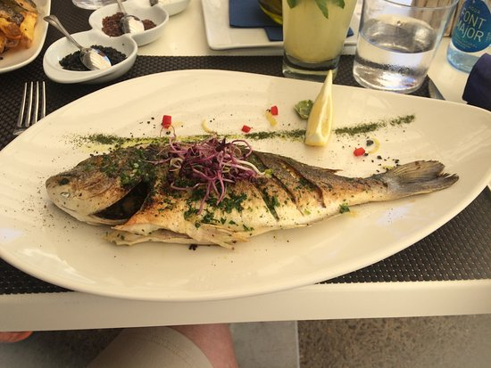 Food - Kingfisher Restaurant Photo