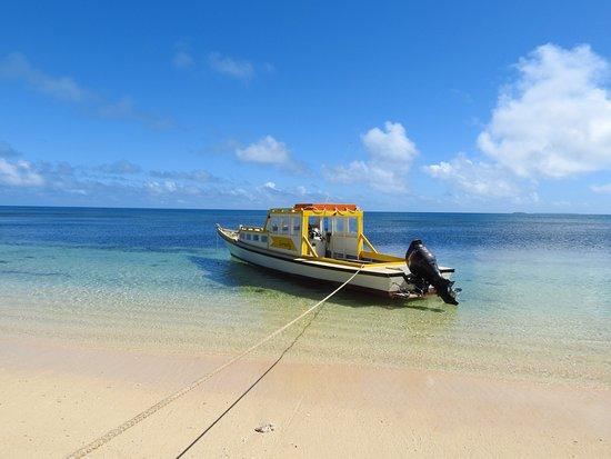 Uoleva Island, Tonga: our transport