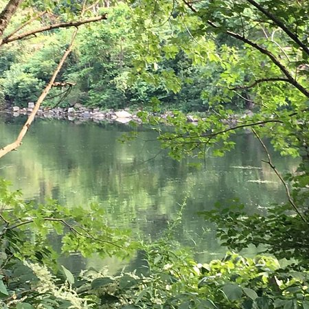 Owego Hickories Park