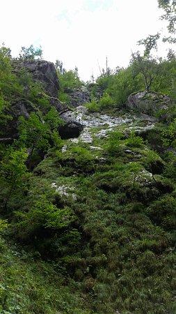 Ferlach, Österreich: 20160905_135313_large.jpg
