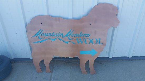Buffalo, WY: Mountain Meadow Wool