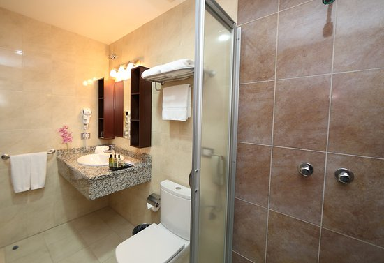 Hotel Ciudad de David: Executive Room- Bathroom
