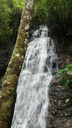 Gracias, Honduras: 20160822_135429_large.jpg