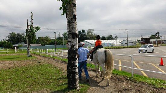 Shikaoi-cho, Japan: 乗馬の様子