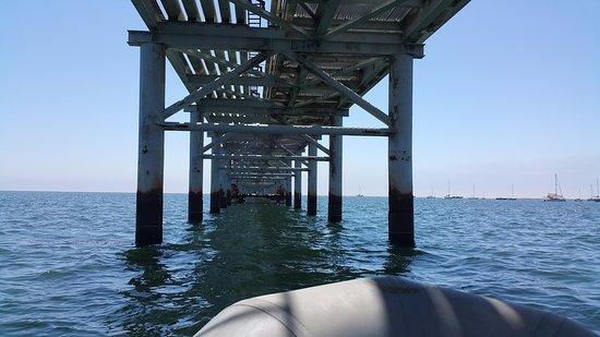 Avila Beach, Καλιφόρνια: Traveling under pier