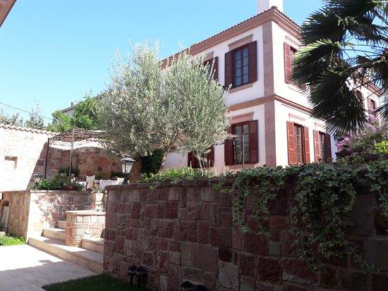 Garten terrasse  Terrasse / Garten - YundAntik Cunda Konakları, Namık Kemal Resmi ...