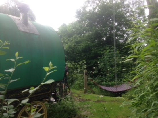 Hoarwithy, UK: Taken from side of van private double hammock and tree swing