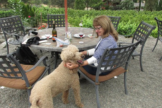 "Roseburg, OR: My wife with ""Syrah"", the winery dog"