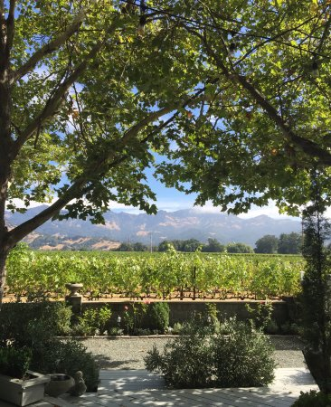 Chateau de Vie: ...looking out across the vineyards to the mountains