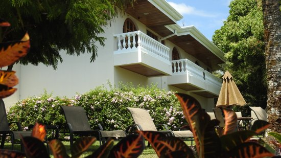 Hotel Buena Vista: Shows balconies from back garden - with lawn chairs and umbrellas.