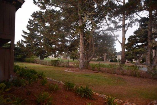 هاف مون باي لودج: The grounds - View from Patio Door of Room