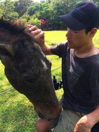 Cow Bay, Australia: Youki with Jester