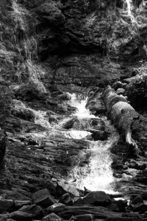 Mingo Falls: Nice black and white still