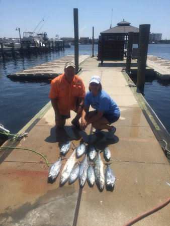 Red snapper picture of gulf angler fishing charters for Gulf angler fishing charters